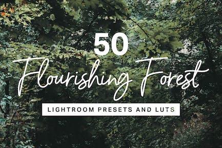 50 Forest Lightroom Mobile and Desktop Presets