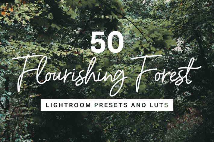Thumbnail for 50 Forest Lightroom Mobile and Desktop Presets