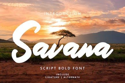 Savana - Fuente de escritura en negrita