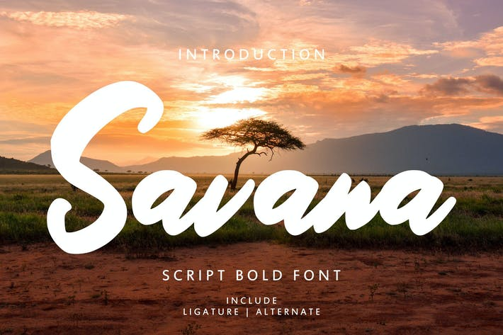Thumbnail for Savana - Script Bold Font