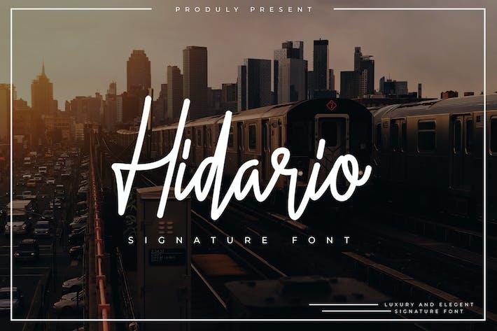 Thumbnail for Hidario Signature Font