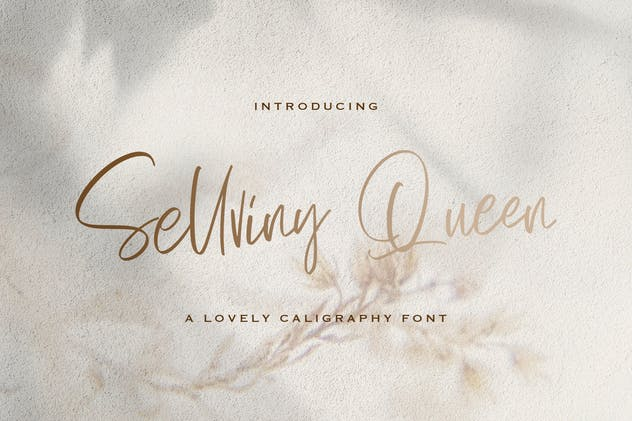 Sellviny Queen - Handwritten Font - product preview 11