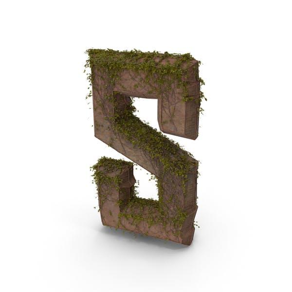 Камень с плющом буква S