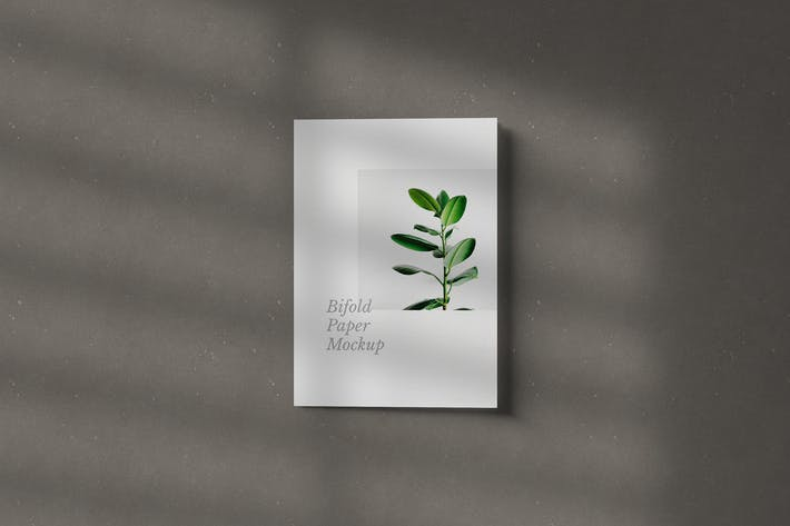Thumbnail for Bifold Paper Mockup