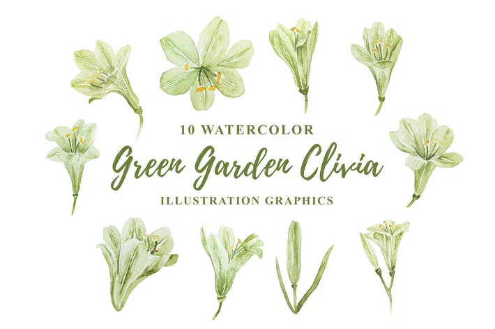 Thumbnail for 10 Watercolor Green Garden Clivia Illustration