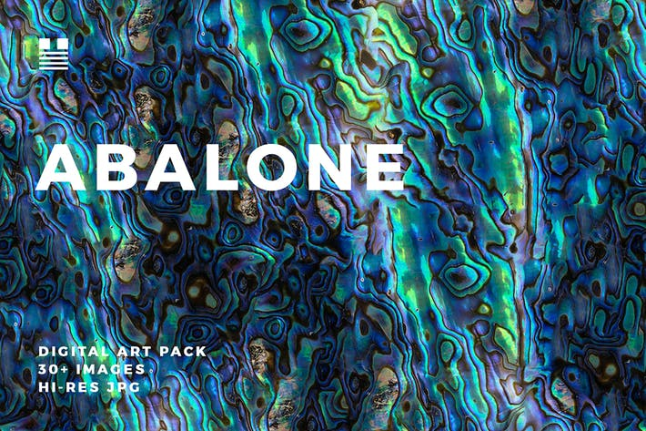 Thumbnail for Abalone