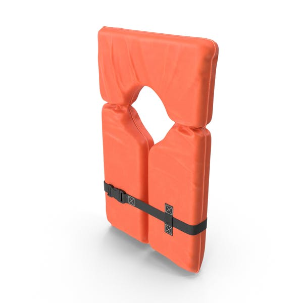 Cover Image for Life Vest