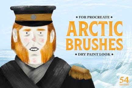 Арктическая сухая Кисти для Procreate