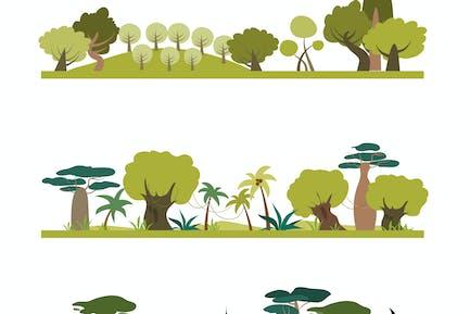 Set of different trees species . Coniferous,