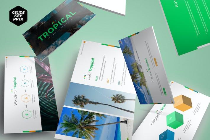 Tropical - Шаблон презентации
