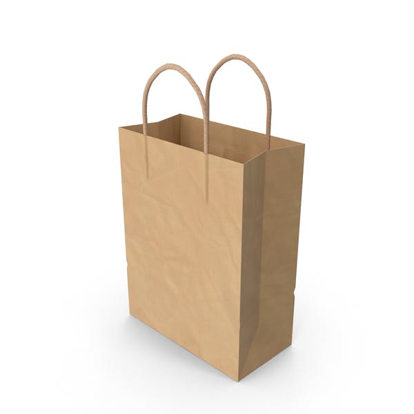 Paper Shopping Bag with Paper Handle