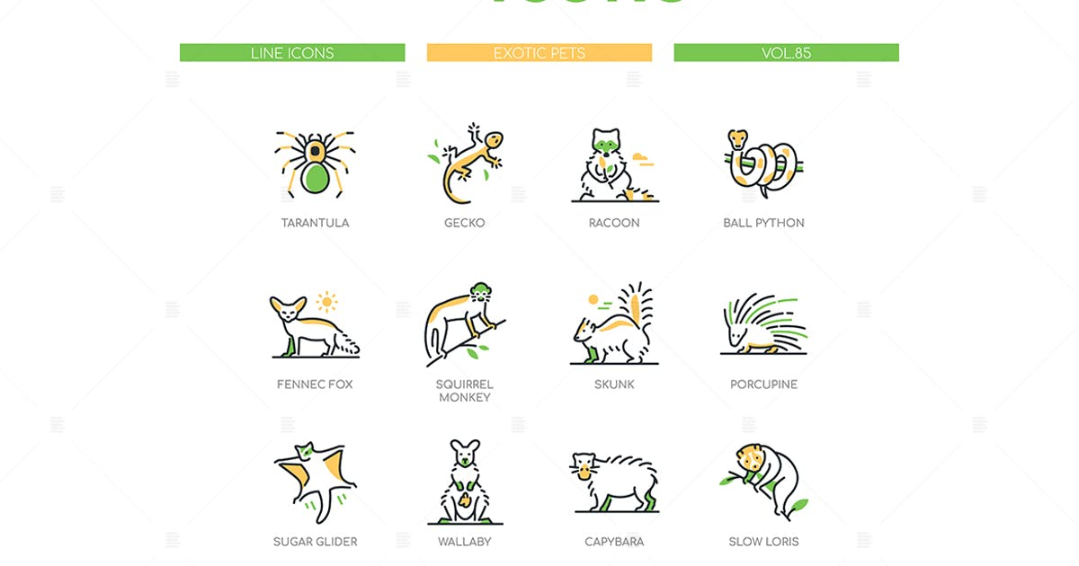 Download Exotic pets - modern line design style icons set by BoykoPictures