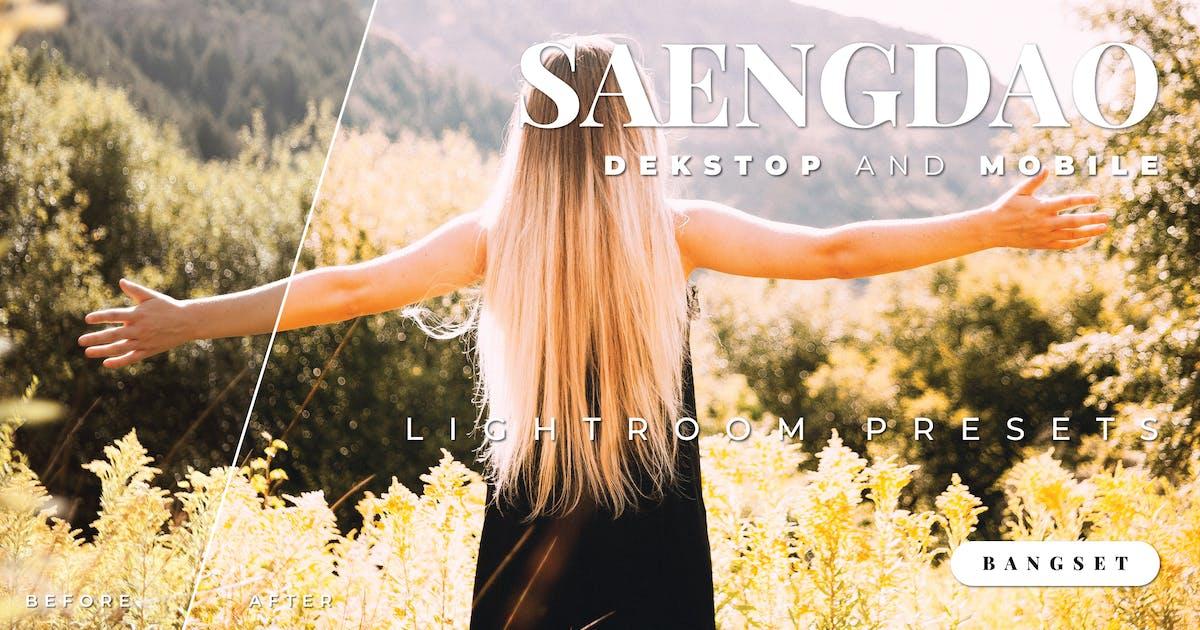 Download Saengdao Desktop and Mobile Lightroom Preset by Bangset