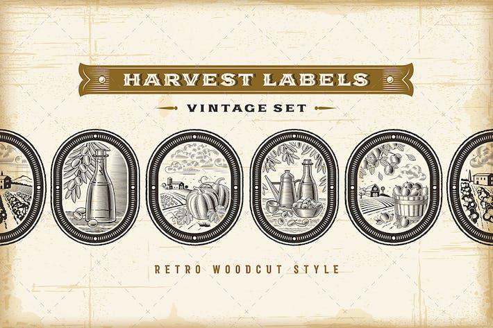 Thumbnail for Vintage Harvest Labels Set