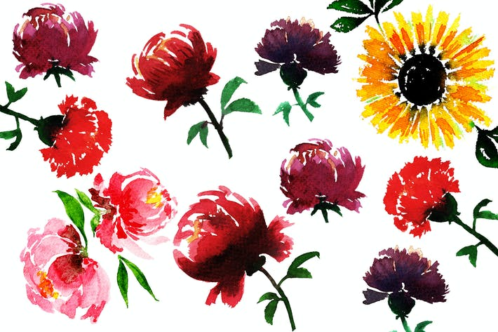 Thumbnail for Watercolor Flowers - Floral Elements
