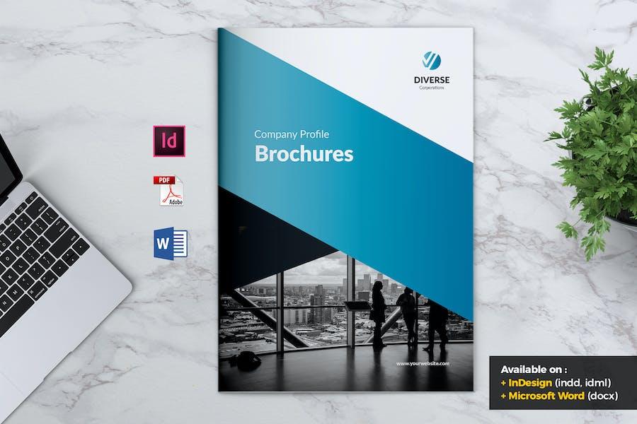 DIVERSE Professional Company Profile Brochures