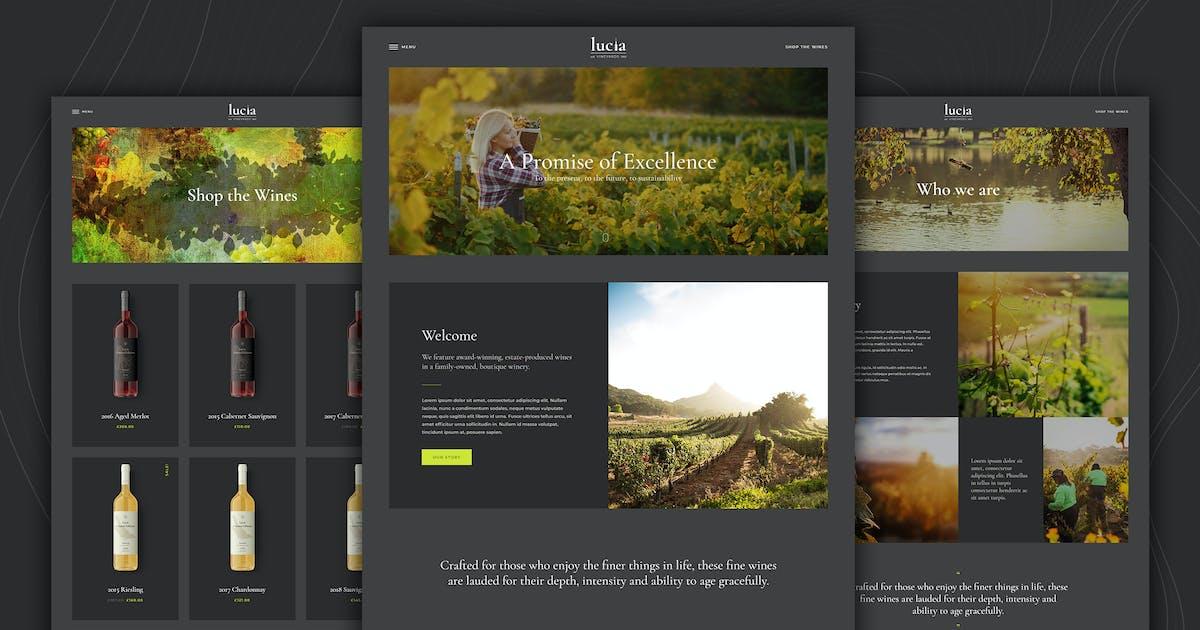 Download Lucia - Wine WordPress Theme by disgogo
