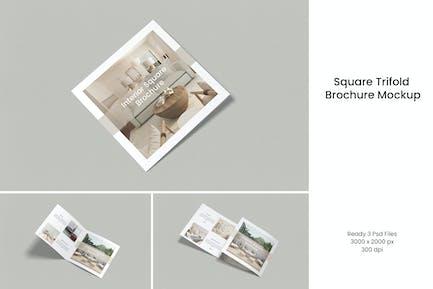 Square Trifold Brochure V.2