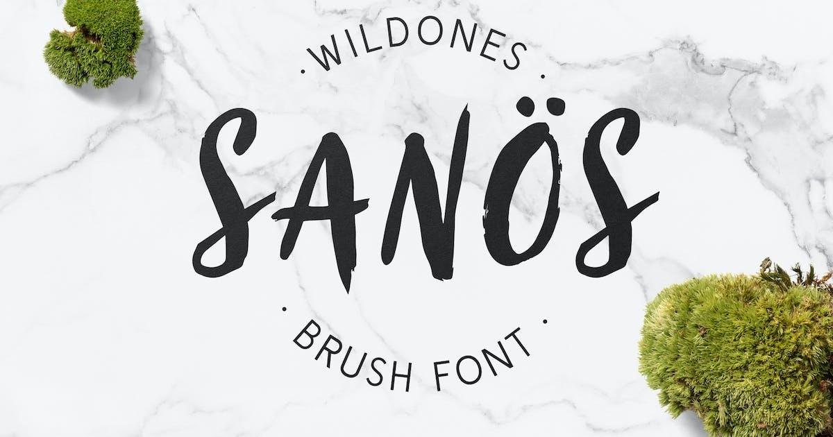 Download Sanös Brush Script Font by WildOnes