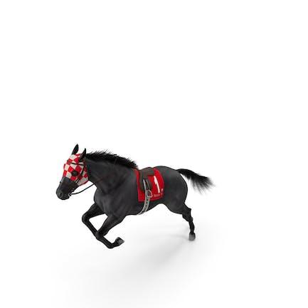 Jumping Black Racing Horse Fur