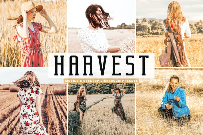 Thumbnail for Harvest Mobile & Desktop Lightroom Presets