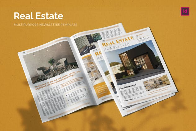 Real Estate Issue - Newsletter Template