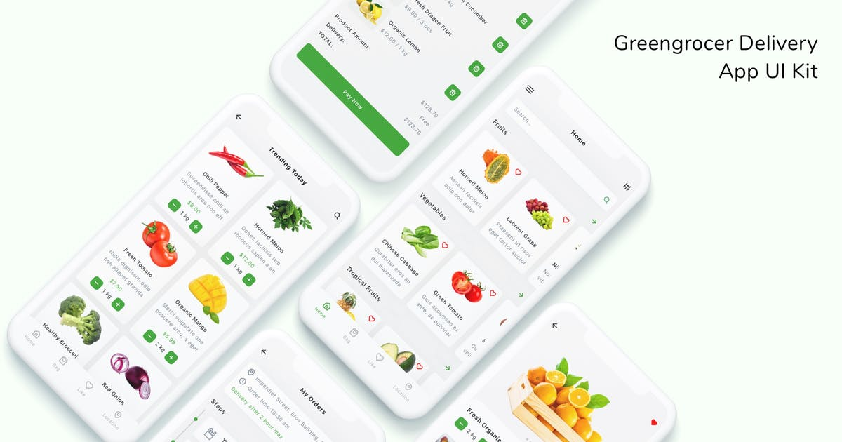 Download Greengrocer Delivery App UI Kit by betush