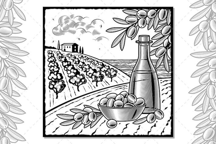Thumbnail for Olive Harvest Black And White