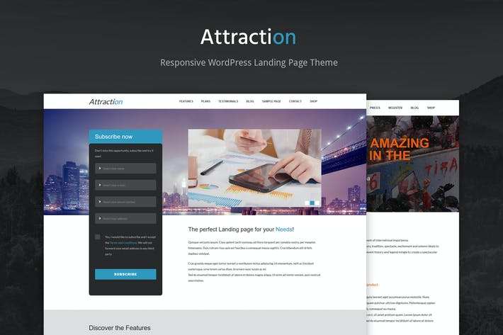 Thumbnail for Attraction Responsive WordPress Landing Page Theme