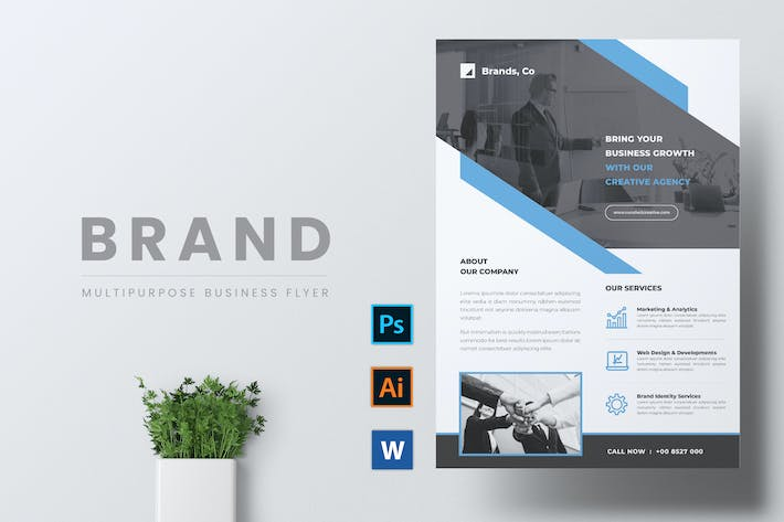 Thumbnail for BRANDS Multipurpose Business Flyer