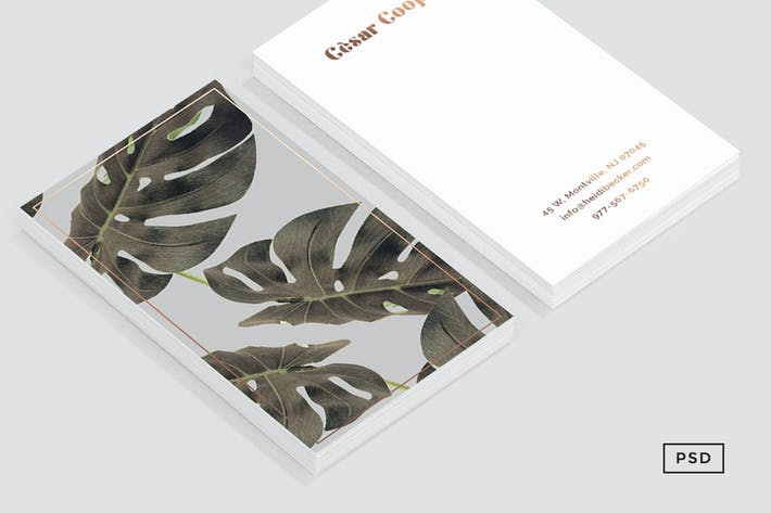 Monstera art business card template by 83oranges on envato elements cover image for monstera art business card template flashek Image collections