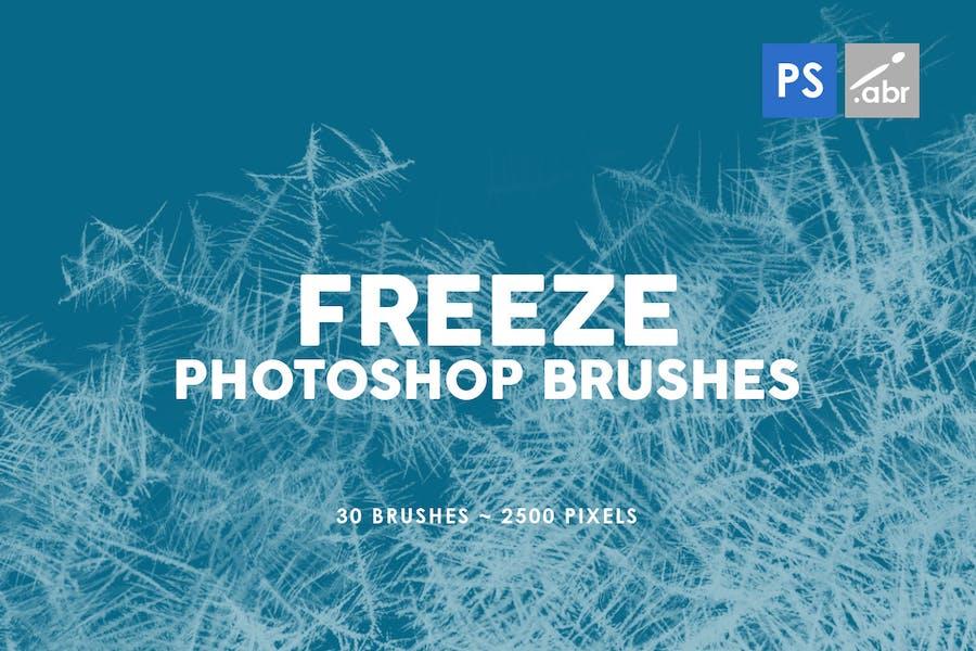 30 Freeze Photoshop Stamp Brushes