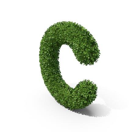 Letra en forma de seto c
