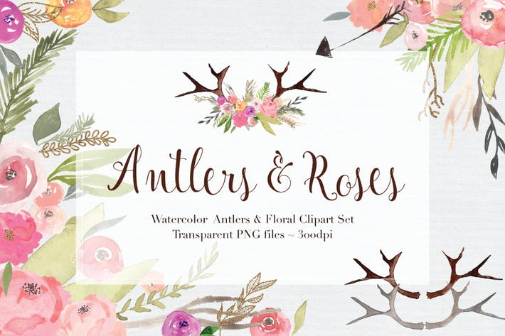 Thumbnail for Antlers & Roses