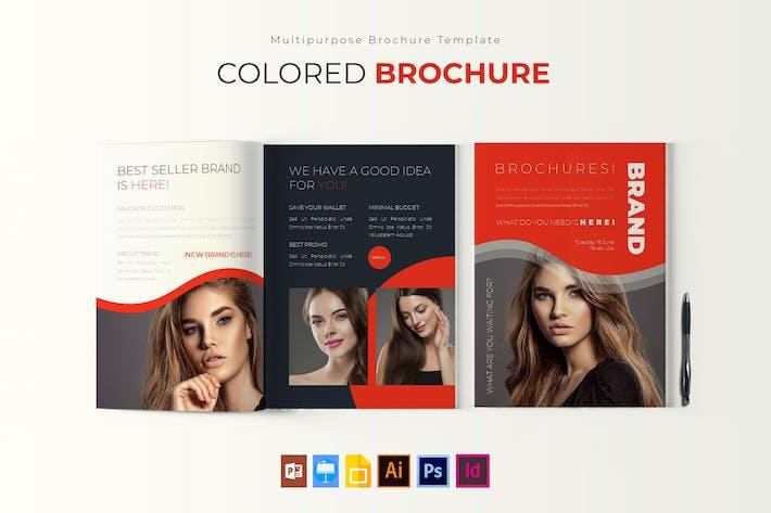 Thumbnail for Coloré | Modèle de brochure