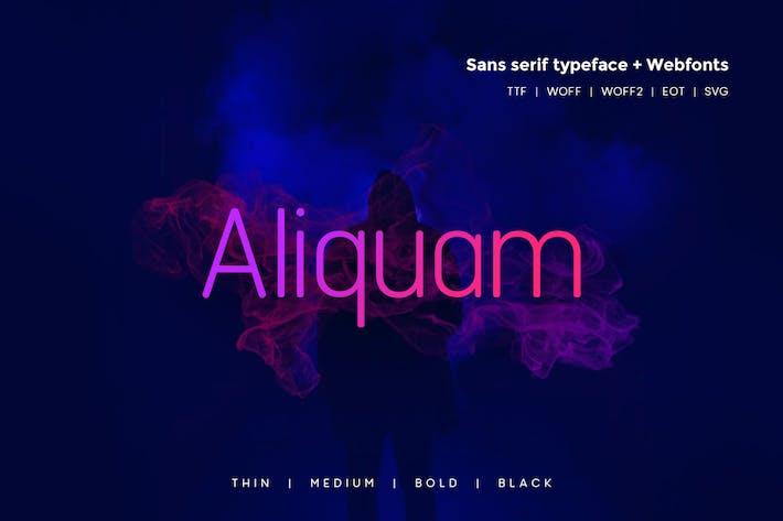 Thumbnail for Aliquam - Modern Typeface + WebFonts