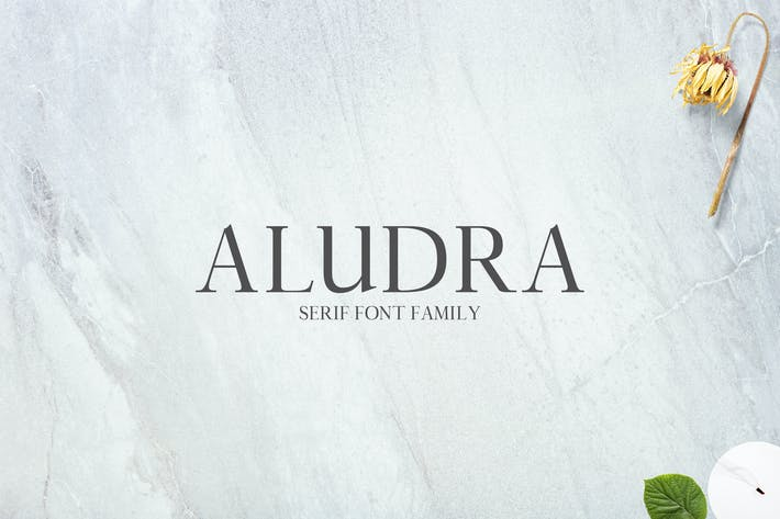 Thumbnail for Aludra Con serifa Font Family Pack Color blanco
