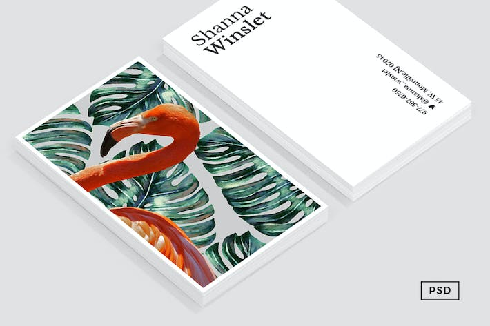 Flamingo & Monstera Business Card