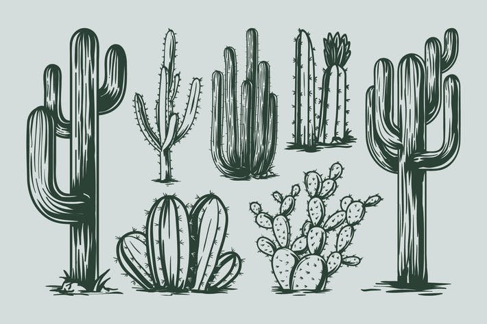 Thumbnail for Cactus Hand Drawing