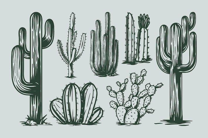 Thumbnail for Kaktus Handzeichnung