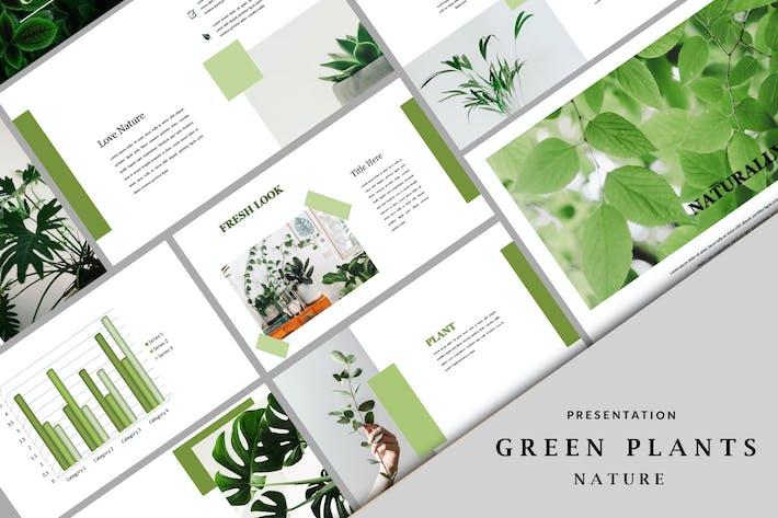 Thumbnail for Зеленые растения - Шаблон Keynote природы