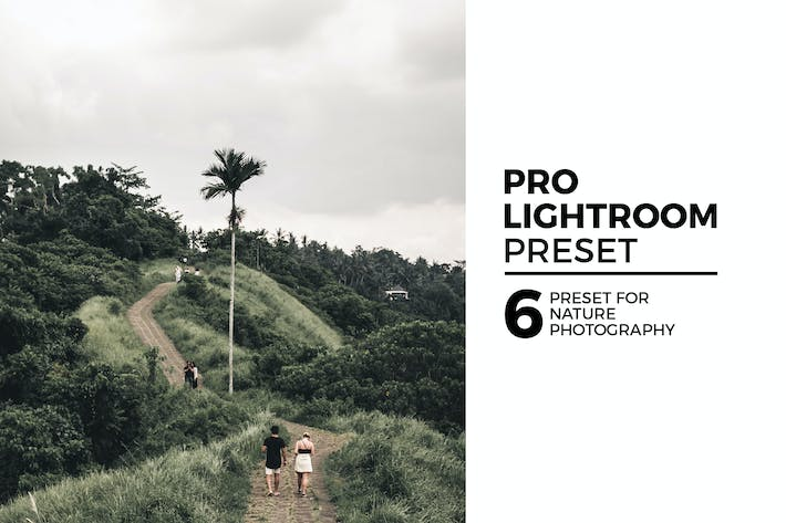 Thumbnail for 6 Nature Lightroom Preset