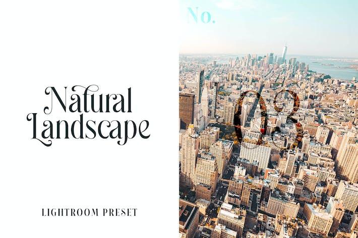 Пресет Lightroom - Природный ландшафт No.03