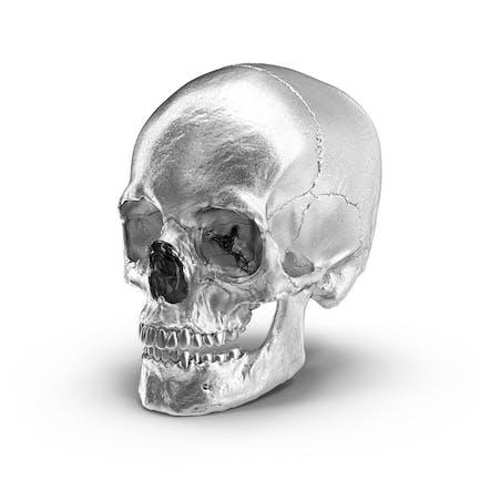 Cráneo cromado
