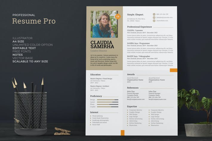 Clean Female Resume / CV Pro
