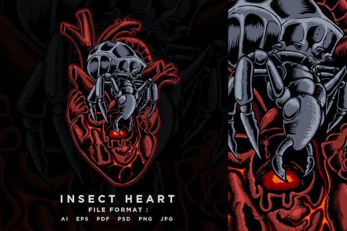 Insekt Herz