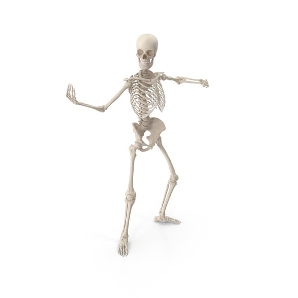 Thumbnail for Skeleton Bring It