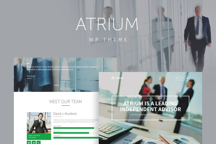 Thumbnail for Atrium - Finance Consulting WordPress Theme