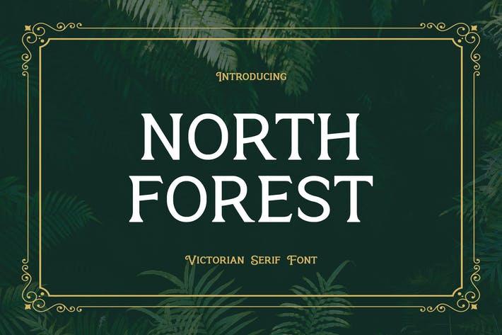 Thumbnail for North Forest Vintage Fuente Con serifa