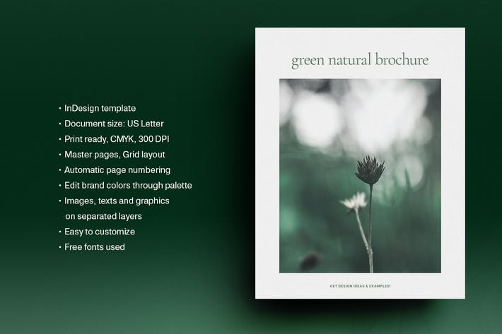 Thumbnail for Green Natural Brochure Template